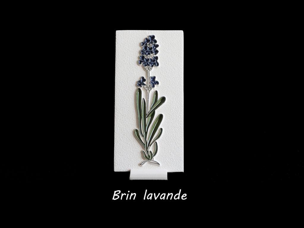 brin_lavande